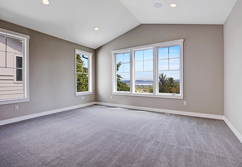 Master bedroom with carpet and windows