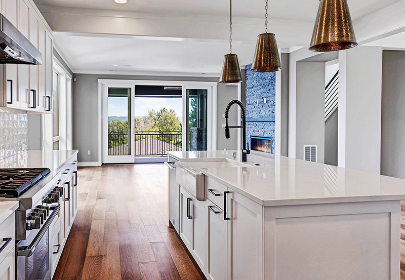 Kitchen & Great Room View