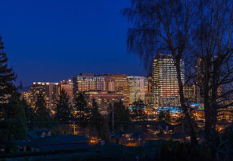 Lyon Twilight View