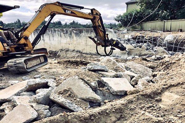 Arboretum Excavation